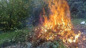 thumbnail-emploi-du-feu